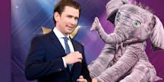 """Fans sind sicher: """"Sebastian Kurz ist der Babyelefant"""""""