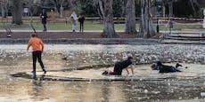 Buben brechen im Stadtpark durch Eisdecke ins Wasser