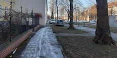Nein, kein Schnee – das sind Salzteppiche in Wien