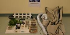 Paar hortete unzählige Drogen in Wohnhaus