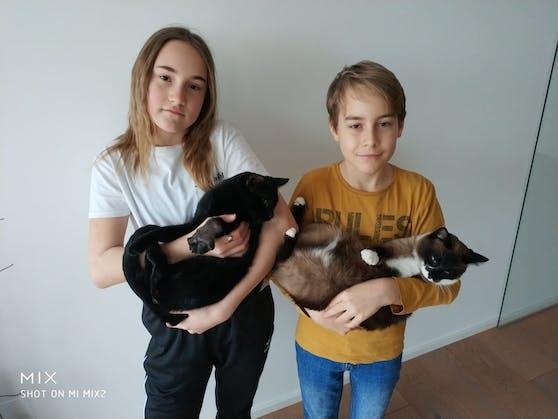 Kater Raul (li.) wurde durch eine Schlagfalle schwer verletzt. Die beiden Kinder Viktoria (11) und Sebastian (9) kümmern sich liebevoll um ihre Haustiere.