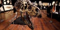 Woher kam das Objekt, das die Dinosaurier auslöschte?