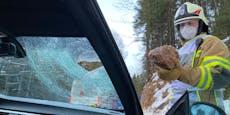 Felsbrocken verletzt Beifahrerin in BMW schwer