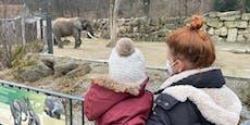 Warum mich ein Zoo-Besuch als Mutter wütend macht