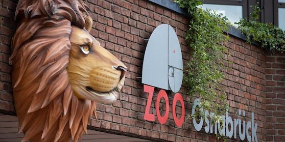 Im Zoo von Osnabrück kam es am Sonntag zu einem Zwischenfall.
