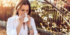 Für Allergiker ist Frühlingswetter nur halb so schön
