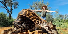 Ehemann schenkt Frau zum Valentinstag Herz von Giraffe