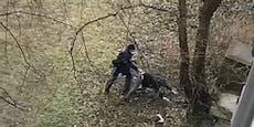 Wiener will vor Polizei flüchten und auf Baum klettern