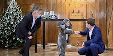 Babyelefant-Kampagne schlug mit 3,2 Millionen zu Buche