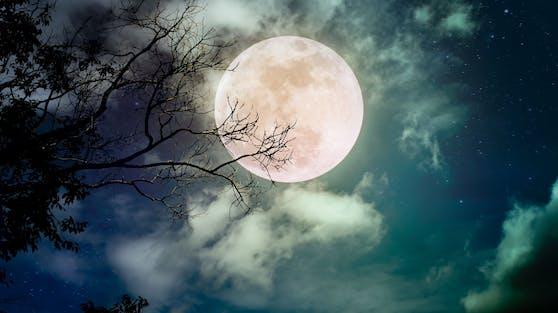 """Der Vollmond im Februar ist der letzte im Winter und trägt den Namen """"Snow Moon""""."""