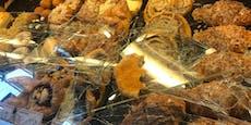 Corona-Leugner zertrümmert Vitrine, um Gebäck zu essen