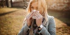 Diesen Ort sollten Pollenallergiker jetzt meiden