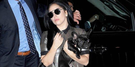 Während eines überraschenden Rom-Besuchs von Popstar Lady Gaga hat sich in Los Angeles ein Drama um ihre Hunde ereignet.