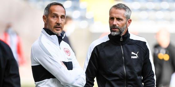 Adi Hütter wird definitiv nicht Nachfolger von Marco Rose.