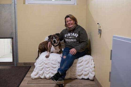 Seit acht Jahren lebt der Staffordshire-Terrier Duke, hier mit Pflegerin Agnes Schischka, im Tierheim Linz.