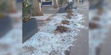 Sturm verwüstet beliebte Eisdiele in der Wiener City