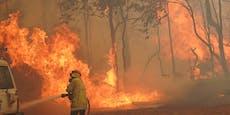 """Heftige Buschfeuer: """"Es ist zu spät, um zu fliehen"""""""