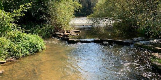 30.000 Liter Gülle flossen in einen Bach im Bezirk Weiz.