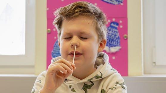 """Der Unterrichtsminister räumt laut """"profil"""" eine beschränkte Trefferquote der Nasenbohrer-Tests ein."""