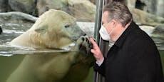 """""""Schon 150 Kilo"""" – Bürgermeister besucht """"Finja"""""""