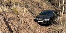 Drogen-Lenker (23) blieb am Jakobsweg im Wald stecken