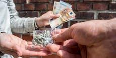 24-Jähriger vertickte Drogen im Wert von 250.000 Euro