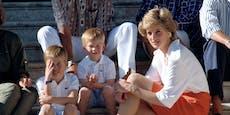 Dianas Albtraum: William stellt sich gegen Harry