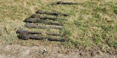 Acht Panzerfäuste im Bezirk Melk ausgegraben