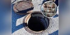 MiAUA! Katze war eine Woche in Kanalrohr gefangen