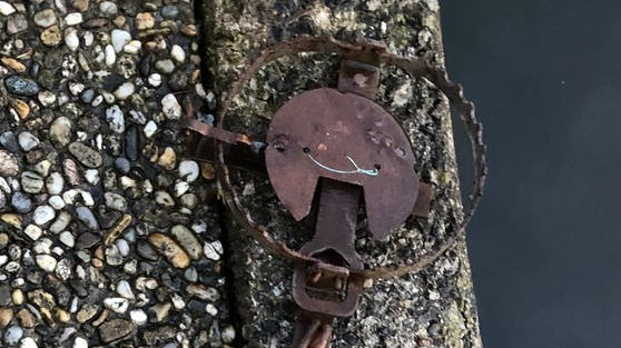 Die sogenannten Tellereisen wurden nun von Spaziergängern an einem Fischteich im Bezirk Vöcklabruck  gefunden.
