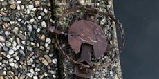Eisenfallen an Fischteich in Vöcklabruck entdeckt