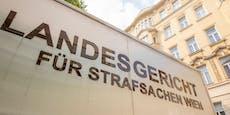 Kokain-Prozess gegen Kinder-TV-Moderator in Wien
