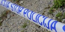 Angeketteter Hund beißt achtjähriges Mädchen tot
