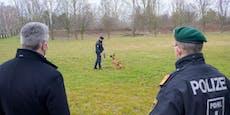Hier kuschelt Nehammer mit Baby-Polizeihunden