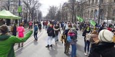 Demo in Wien legt Verkehr und Öffis teilweise lahm