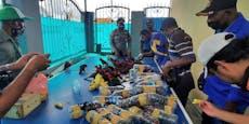 Lebende Papageien in Pet-Flaschen geschmuggelt