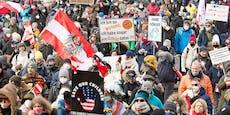 1.650 Anzeigen! Die Demo-Bilanz der Wiener Polizei