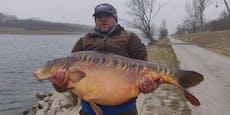 Mann fängt über 28 Kilo schweren Monsterfisch