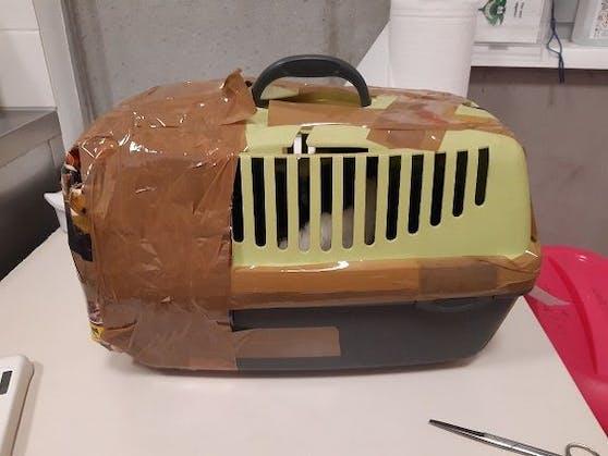 Der arme Kater wurde mitten in der Postfilale in seiner Transportbox ausgesetzt.