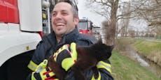 Katze flüchtete bei Brand in Motorraum vom Einsatzwagen