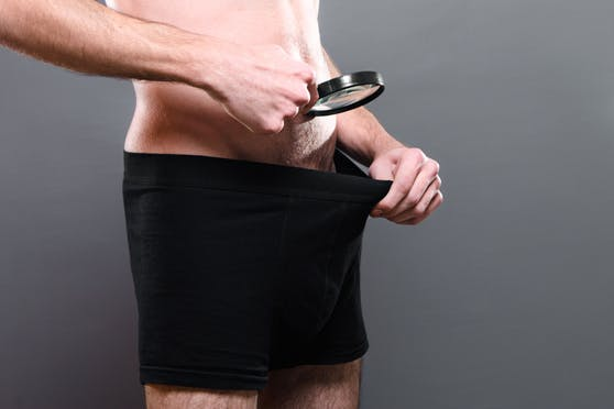Mikroplastik lässt laut Studienergebnissen den Penis schrumpfen.