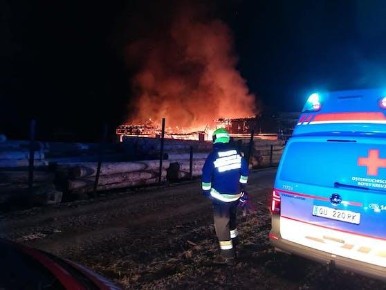 In einem Sägewerk in Deutschfeistritz brannte es in der Nacht auf Mittwoch (03.03.2021)