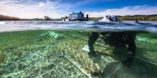 Taucher bergen 4000 Jahre altes Boot aus dem Bodensee