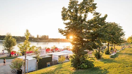 Donauinsel im Sommer