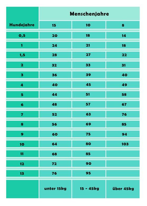 Auf dieser Tabelle siehst du den Alterungsprozess deines Hundes