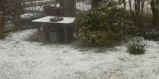 Schnee in Wien – Experte sagt, wie es nun weitergeht
