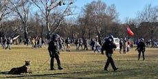 Polizei warnt: Tausende machen grünen Prater unsicher