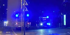 Mutter beleidigt – WEGA stoppt Massenschlägerei in Wien