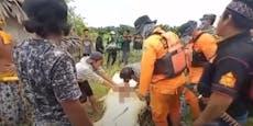 Sohn (8) gefressen! Vater schlug auf Todes-Krokodil ein