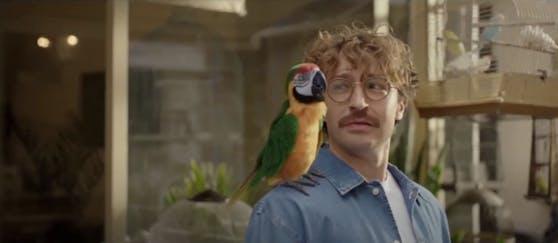 Benimmkurs für den Papagei.